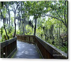 Shady Boardwalk Acrylic Print