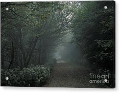 Shady Lane Acrylic Print by Stan and Anne Foster