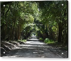 Shady Tree Lined Carpenter Road Acrylic Print by rd Erickson