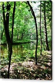 Shady Woods Acrylic Print by Susan Savad