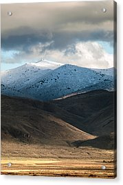 Shaffer With Snow Acrylic Print