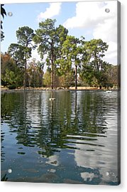 Shalom Reflections 2 Acrylic Print by Warren Thompson