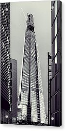 Shard Of Glass Acrylic Print