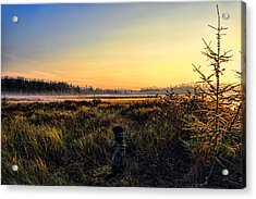 Sharing A September Sunrise With A Retriever Acrylic Print