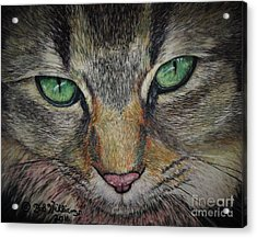 Sharna Eyes Acrylic Print