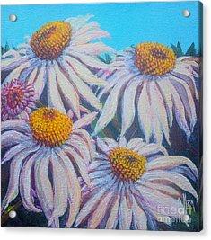 Shasta Daisy#1 Acrylic Print