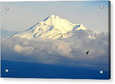 Shasta Near Sunset Acrylic Print