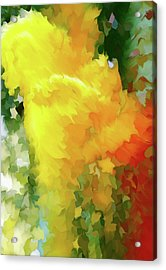 Shattered Lily Abstract Grunge Acrylic Print