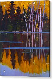 Shaw Lake Reflections Acrylic Print by Susan McCullough