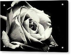 She Blooms Acrylic Print