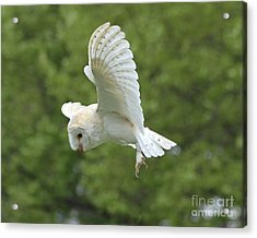 She Sees Sound Acrylic Print