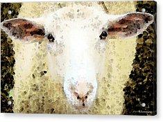 Sheep Art - Ewe Rang Acrylic Print by Sharon Cummings