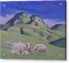 Sheep At Sutter Buttes Acrylic Print