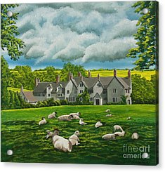 Sheep In Repose Acrylic Print by Charlotte Blanchard