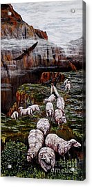 Sheep In The Mountains  Acrylic Print by Judy Kirouac