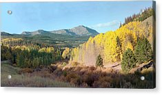 Acrylic Print featuring the photograph Sheep Mtn In Flat Tops by Daniel Hebard
