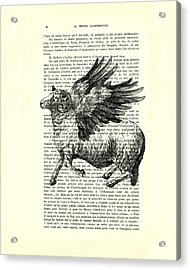 Sheep With Angel Wings Black And White  Acrylic Print