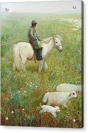 Sheepherder Acrylic Print by Ji-qun Chen