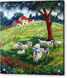Sheeps In A Field Acrylic Print by Richard T Pranke