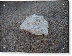 Acrylic Print featuring the photograph Shell And Sand by Rob Hans