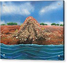 Shell Mound Acrylic Print