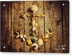 Shell N Anchor Acrylic Print by Jorgo Photography - Wall Art Gallery