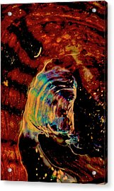 Shell Space Acrylic Print by Gina O'Brien