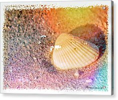 Acrylic Print featuring the photograph Shelling Out by Marvin Spates