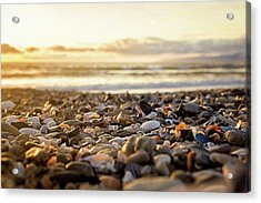 Acrylic Print featuring the photograph Shells At Sunset by April Reppucci