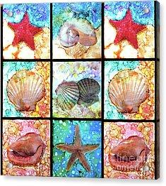 Shells X 9 Acrylic Print