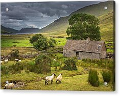 Shelter For Centuries Acrylic Print by Tim Bryan