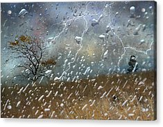 Shelter From The Storm Acrylic Print by Ed Hall
