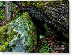 Sheltered By The Rock Acrylic Print