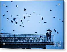 Sheltering Under An Umbrella Watching The Birds Acrylic Print