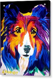 Sheltie - Missy Acrylic Print by Alicia VanNoy Call