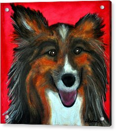 Acrylic Print featuring the painting Sheltie- Maggie by Laura  Grisham