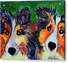 Acrylic Print featuring the painting Sheltie- Whisper And Secret by Laura  Grisham