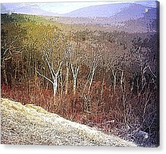 Shenandoah Wilderness Acrylic Print by Susan  Epps Oliver