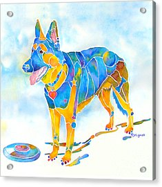 Acrylic Print featuring the painting Shepherd With Frisbee - Play With Me by Jo Lynch