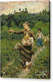 Shepherdess Carrying A Bunch Of Grapes Acrylic Print by Francesco Paolo Michetti