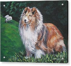 Shetland Sheepdog Acrylic Print by Lee Ann Shepard