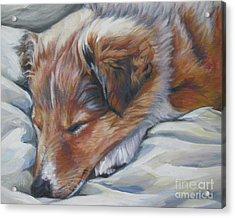 Shetland Sheepdog Sleeping Puppy Acrylic Print by Lee Ann Shepard
