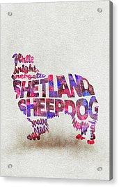Shetland Sheepdog Watercolor Painting / Typographic Art Acrylic Print