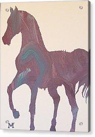 Shima Acrylic Print