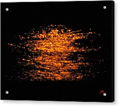 Acrylic Print featuring the photograph Shimmer by Linda Hollis
