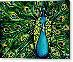 Shimmering Feathers Of A Peacock Acrylic Print by Elizabeth Robinette Tyndall