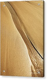 Shimmering Sand Acrylic Print by Brandon Tabiolo - Printscapes