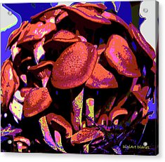 Shimmering Shrooms Acrylic Print by DigiArt Diaries by Vicky B Fuller