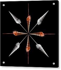 Shinbone Tibia Geometric Acrylic Print by Gary Cloud