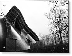 Shine On Gehry At Bard College New York State Acrylic Print by Jane McDougall